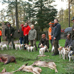 Jagdstrecke im Soonwald
