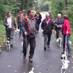 Wanderung am Sommerfest 2015